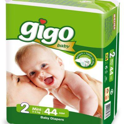 Gigo 2